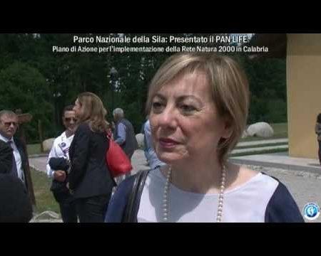 Parco Nazionale della Sila: Presentato il progetto PAN LIFE -interviste-immagini