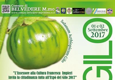 """Belvedere: II edizione dell'Expò del Gilo, la tradizione tra """"sapore e salute"""""""