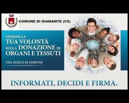 """Diamante:Donazioni, progetto """"Una scelta in Comune""""- conferenza stampa"""