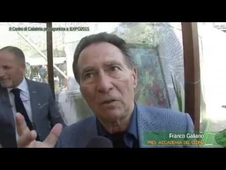 Il Cedro di Calabria protagonista a EXPO 2015- immagini e interviste