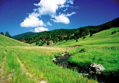 Parco Nazionale della Sila, approvato lo statuto