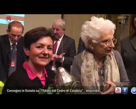 Tutela Cedro di Calabria- Convegno in Senato – Interviste