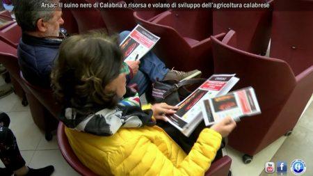 ARSAC: Convegno dedicato al suino nero di Calabria-servizio