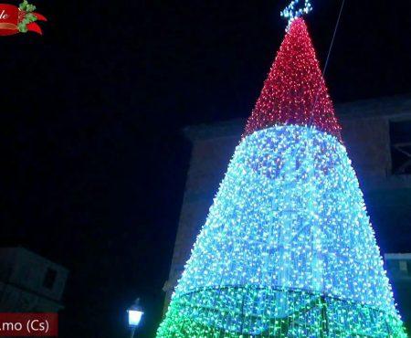 Natale 2020: Albero tricolore a Belvedere M.mo e Presepe luminoso a Diamante e Cirella